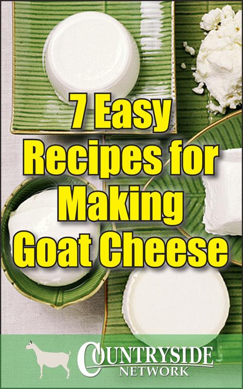 Making Goat Cheese