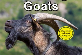 A Guide to Breeding Goats Flip Book