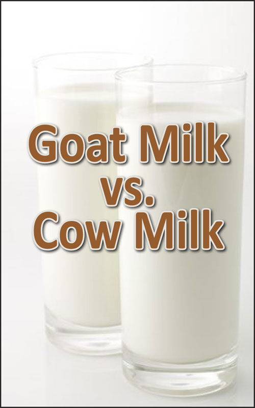 Goat and Cow Milk