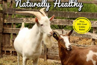 Guide to Keeping Goats Naturally Healthy Flip Book