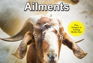 A Guide to Common Goat Ailments Flip Book