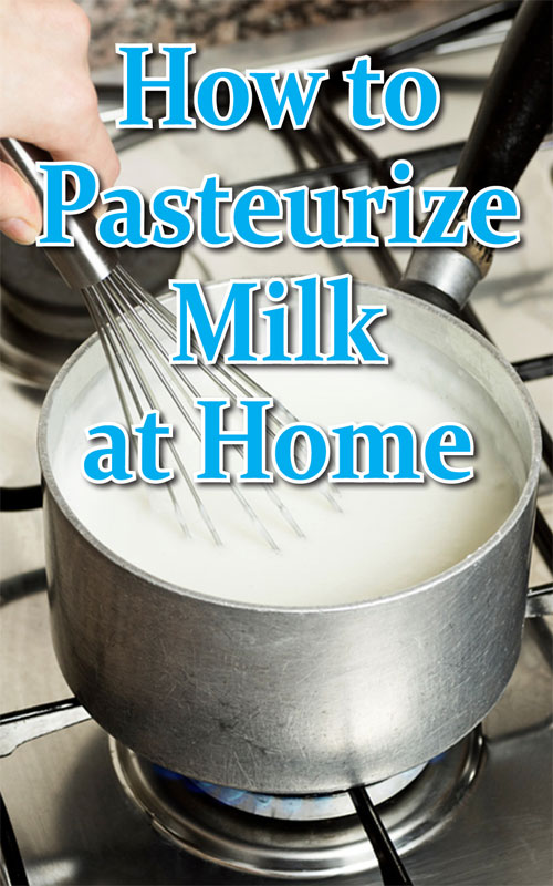 Pasteurize Milk at Home