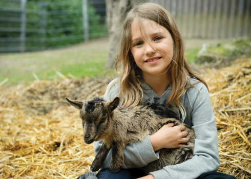 Psychological Impact of Goats for Children with Stress
