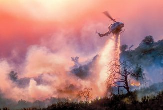 When Wildfires Rage, Animals Can Be Saved